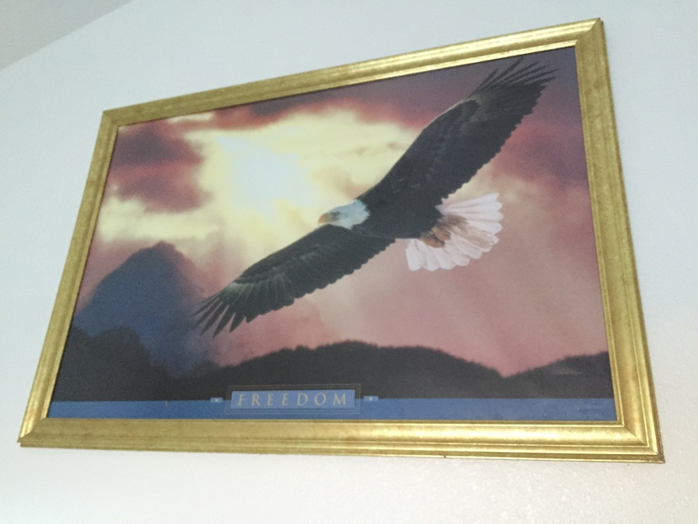 The eagle in our bunk did his best to keep our spirits up.
